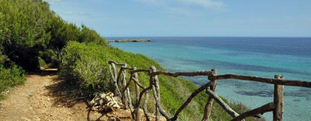 Alquiler coches Menorca empresa local